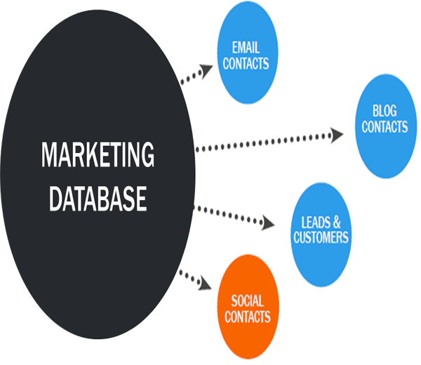 Database Marketing Services